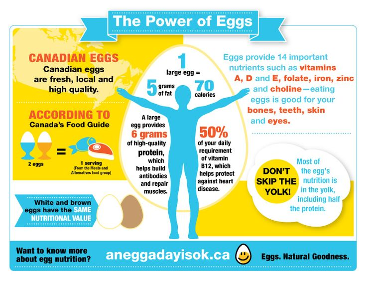 1000+ ideas about Large Egg Nutrition on Pinterest | Egg nutrition ...