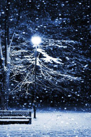 Download free Snow Night Park Nature IPhone Wallpaper Mobile Wallpaper contributed by eulberg, Snow Night Park Nature IPhone Wallpaper Mobile Wallpaper is uploaded in iPhone Wallpapers category.