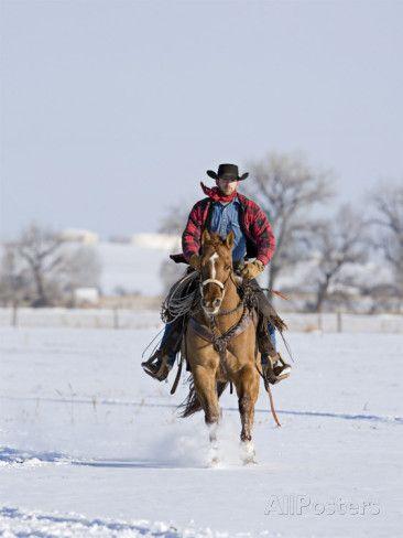 Cowboy Cantering Through Snow On Red Dun Quarter Horse