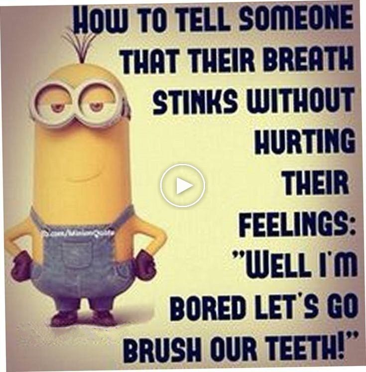 37 Funny Quotes Laughing So Hard Funny Minion Quotes Fun Quotes Funny Minions Funny