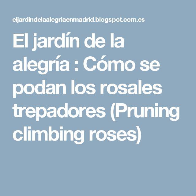 El jardín de la alegría : Cómo se podan los rosales trepadores (Pruning climbing roses)