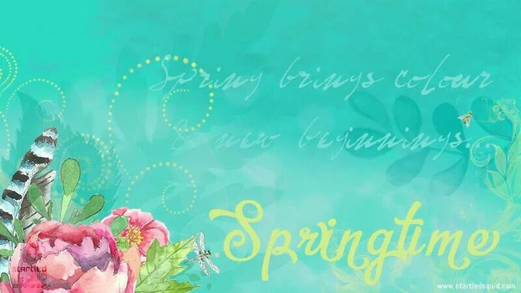 Springtime is here! Beauty, inspiration, new beginnings. Bring it on. www.startledsquid.com