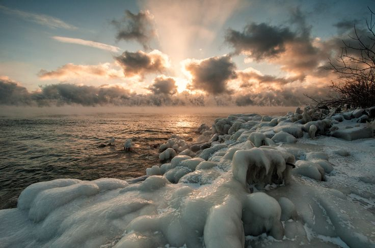 -40 Windchill ~ Leslie Spit lll | Flickr - Photo Sharing!