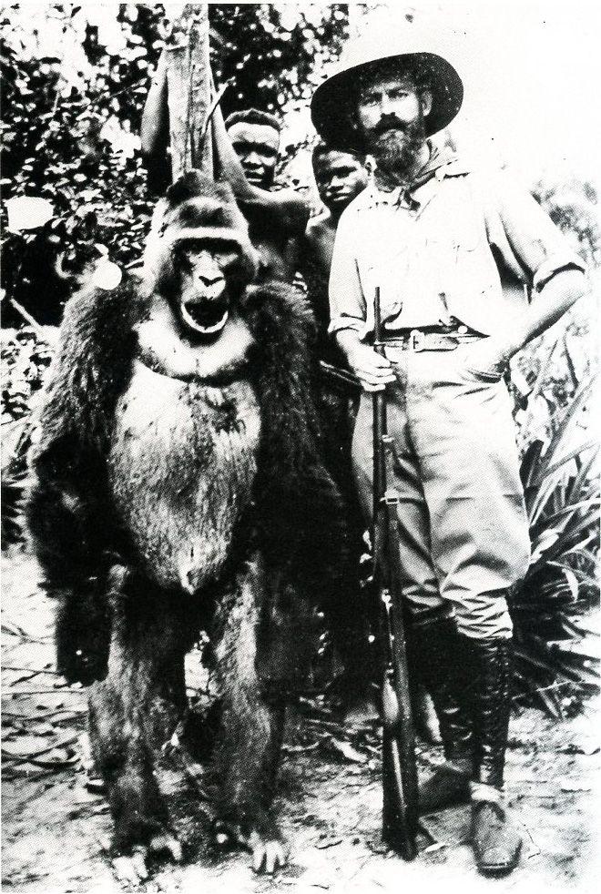 """""""Gorille abattu à Loango, au Congo, par M. Marx, planteur."""" """"Gorilla shot at Loango, Congo, by Mr Marx, plantation owner."""" From Afrique Noire, les Archives."""