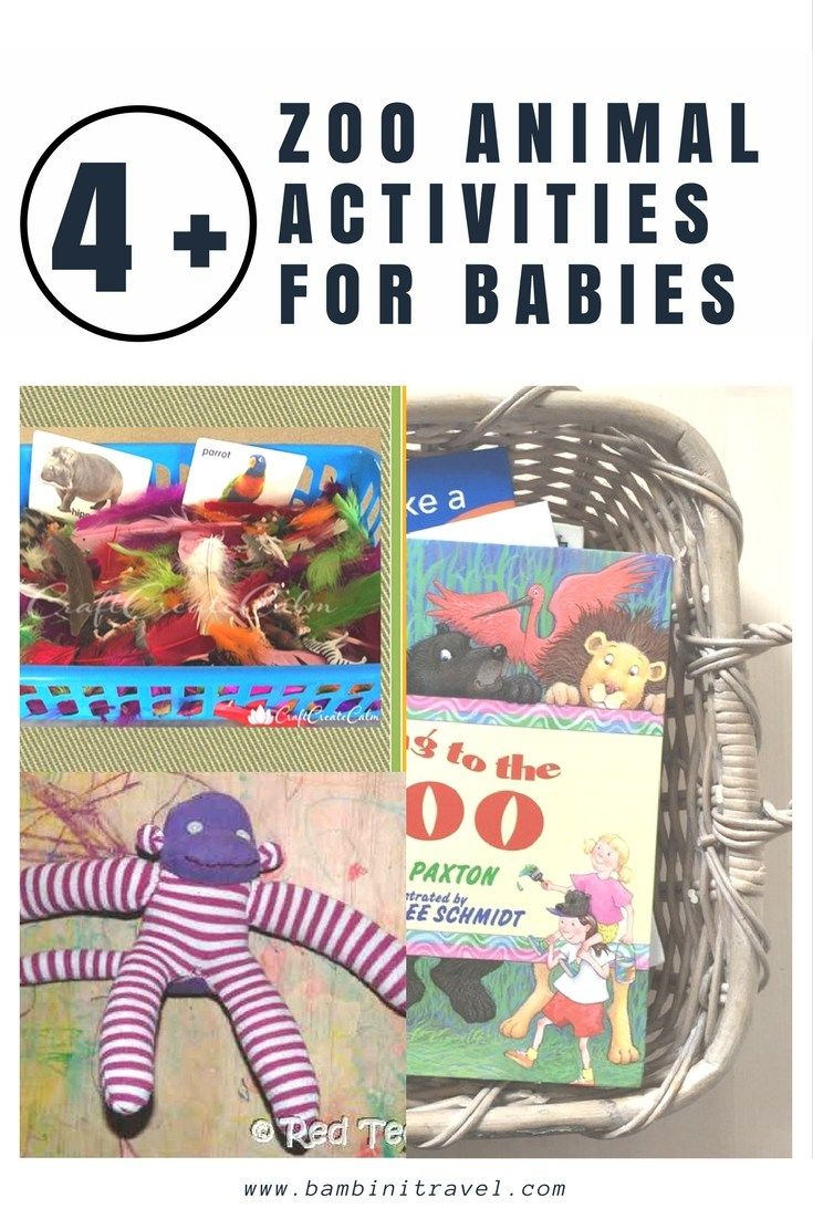 Zoo Animal Activities for Babies