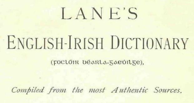Although he received many subscriptions for the second edition, producing it left O'Neill Lane virtually penniless. The day before he passed away a copy of the dictionary arrived by train at his local station in Limerick. He laid his hands on it on his deathbed and died on May 8th, 1915. ( Irish Times newspaper article)