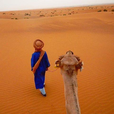 "Sahara Desert, Morocco @viajandoporconta - ""Camel riding in Morocco"" #Backpackerstory #morrocco #camel #backpacker"