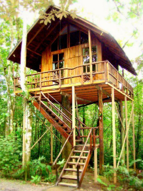 A tree house hotel on stilts in Costa Rica.