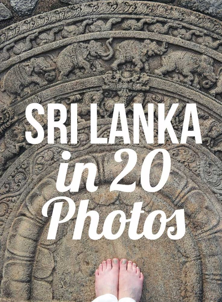 Sri Lanka in 20 photos. The culture, the Unesco sites, the colonial history and the best beach resorts!
