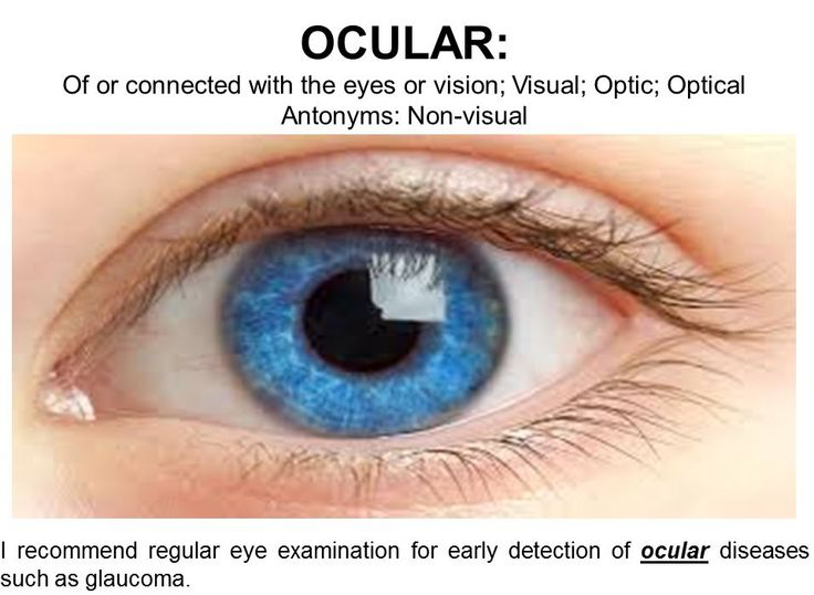 "‪#‎WordoftheDay‬ OCULAR: Of or relating to the eye; . Resembling the eye in form or function; Seen by the eye; visual; eyepiece; optic, optical; Antonym: invisible; non-visual ""Ocular implants, designed to repair blindness by allowing patients to see in the normal range."""