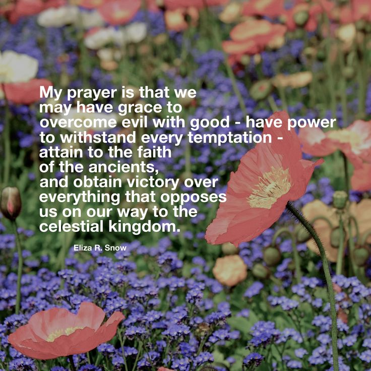 #lds #women #reliefsociety #ldsquotes My prayer is that we may have grace to overcome evil with good—have power to withstand every temptation—attain to the faith of the ancients, and obtain victory over everything that opposes us on our way to the celestial kingdom. Eliza R. Snow