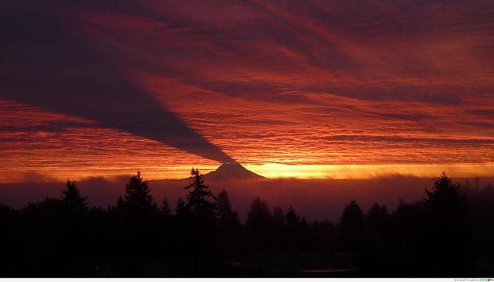 Гора Рейні. штат Вашингтон. США