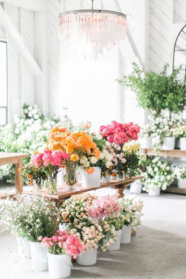 Gorgeous Fresh Flowers In Huge Tubs - Such A Beautiful Floral Image!
