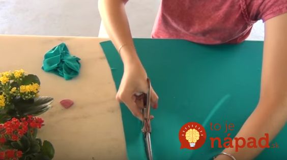 Žena rozstrihala staré tričko na prúžky. Vytvorila perfektnú vec pre izbové rastliny!