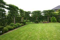 Mooie tuin aanleggen met tuinaannemer Stefaan Brouckaert - tuinaanlegger regio Roeselare West-Vlaanderen