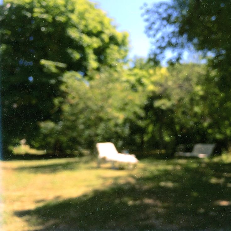 Countryside garden #garden #nature #countryside #sun #summer