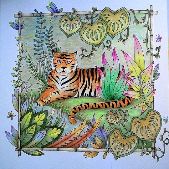 17 Best Images About Magical Jungle Johanna Basford On