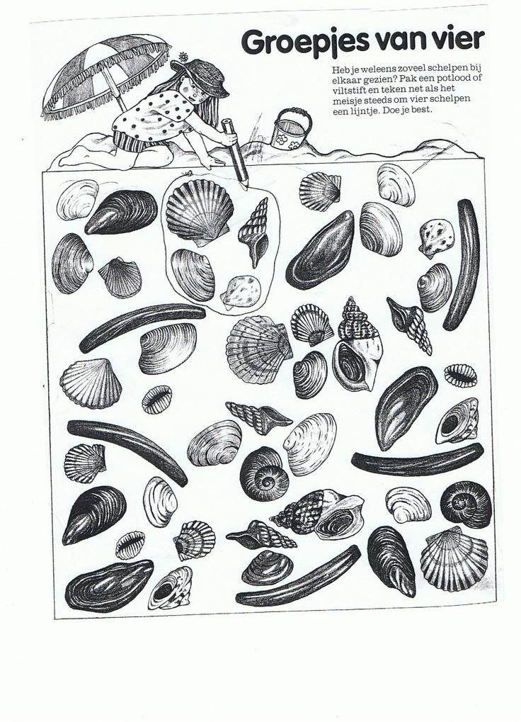 Werkblad: maak groepjes van vier schelpen.
