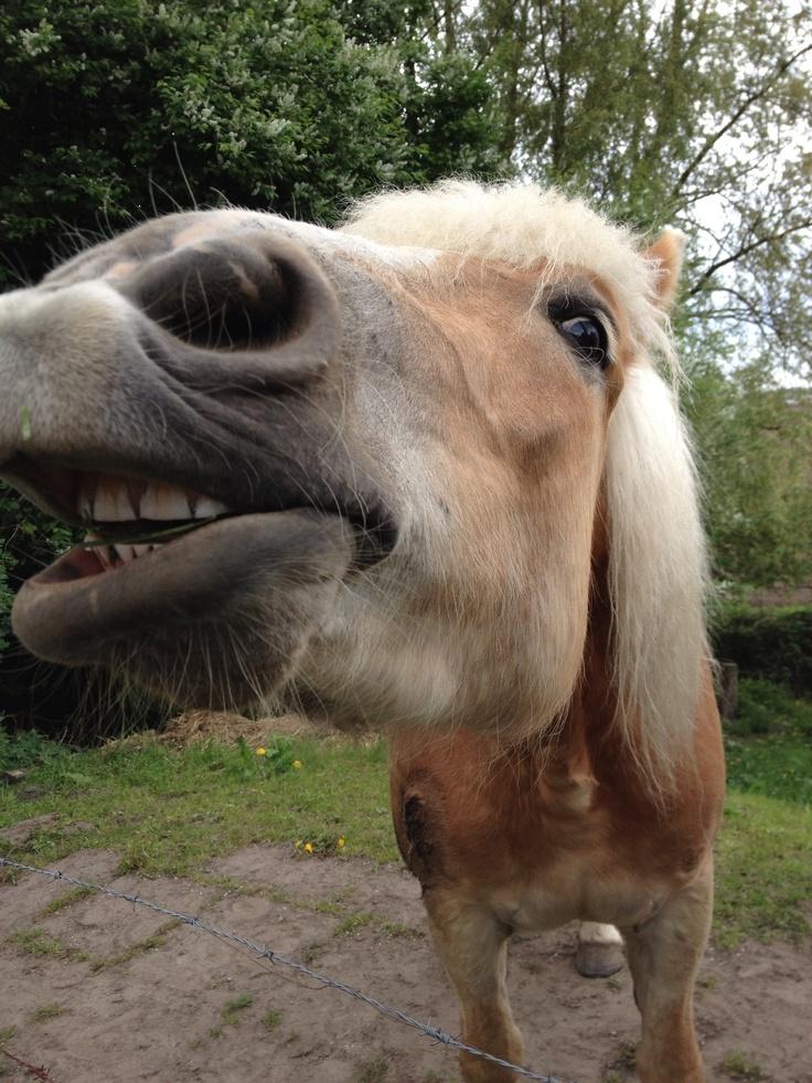 Blondine smiles
