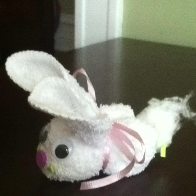 Washcloth Bunnies: 1000+ Images About Washcloth Bunnies On Pinterest