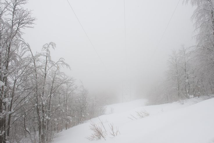 il morbido suono della neve II - March 2016 National Park Appennino Tosco-Emiliano