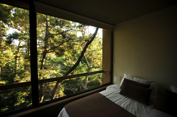 Habitación doble en tonos tierra. Luz natural con el bosque de fondo. Balcón terraza y cama King con sábanas blancas y accesorios color marrón. Vení a relajarte en pareja a Plenilunio.