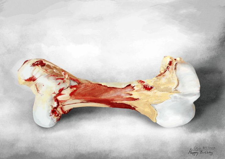 Bone for my dog.. at least the digital one:D