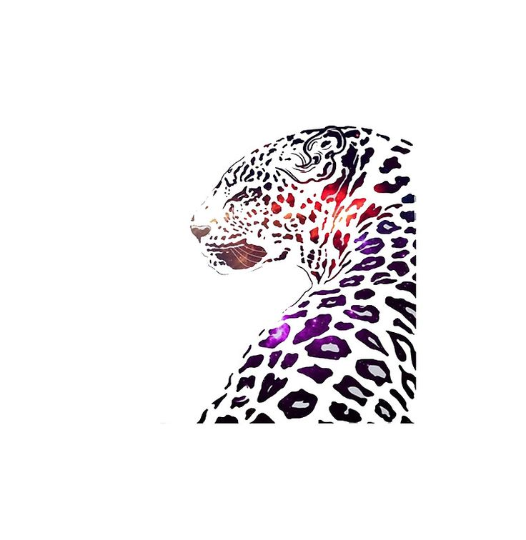 Galaxy Art Leopard
