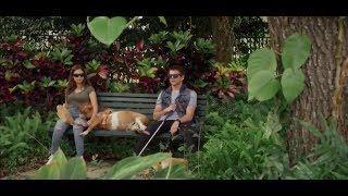 Mejor ESTRENO 2017 /  Peliculas de Amor y Romance Trajedia Pelicula completa en Español 20171   lodynt.com  لودي نت فيديو شير