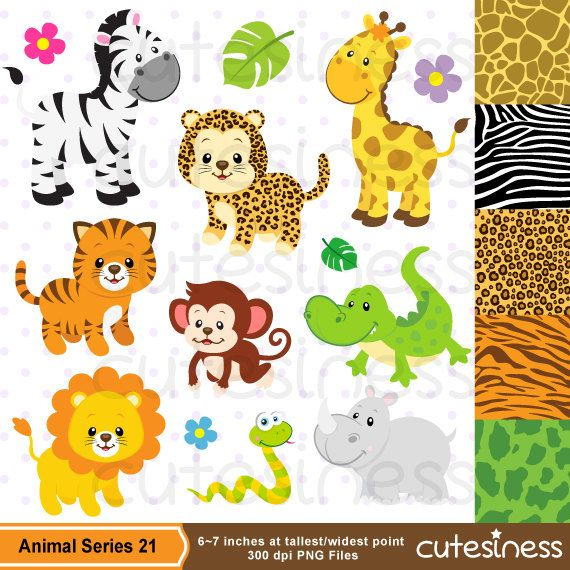 Safari Clipart Baby Animals Clipart Zoo Clipart por Cutesiness