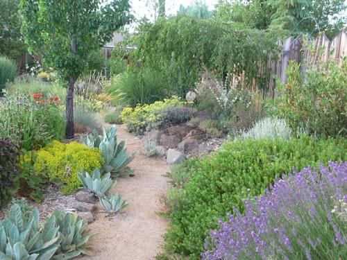 Garden Ideas Small Landscape Gardens Pictures Gallery: Backyard Retreat By Dry Creek Garden Co. In Reno, NV