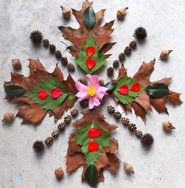 Leaf and petal mandala By DawnsRays