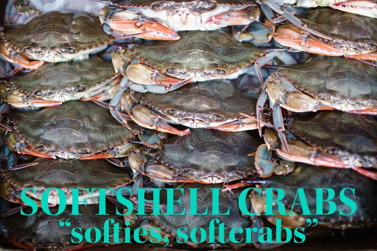 Learn how to prepare fried softshell crabs with Locals Seafood, a seafood  company changing the game by supplying fresh, local seafood to the  Triangle.