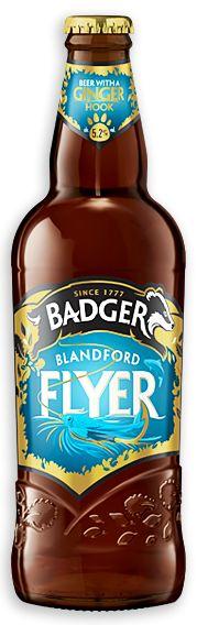 BlanfordFlyer-new