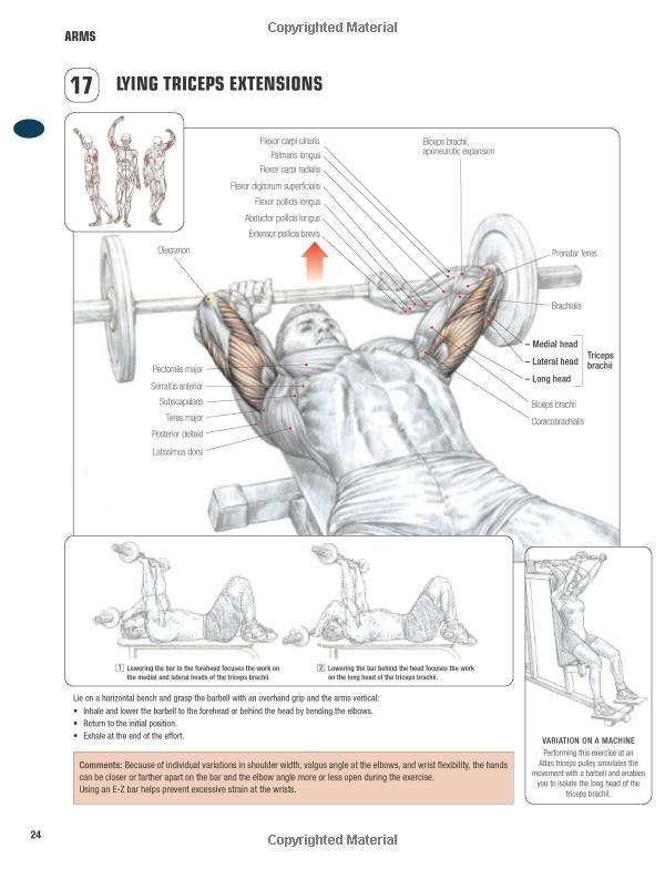 Strength Training: Anatomy Of Strength Training Pdf