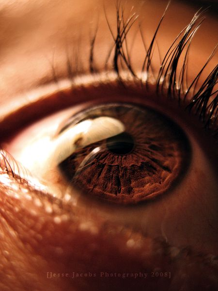 Brown eyes have depth, too! Describe this eye in detail, without being dull or dragging on