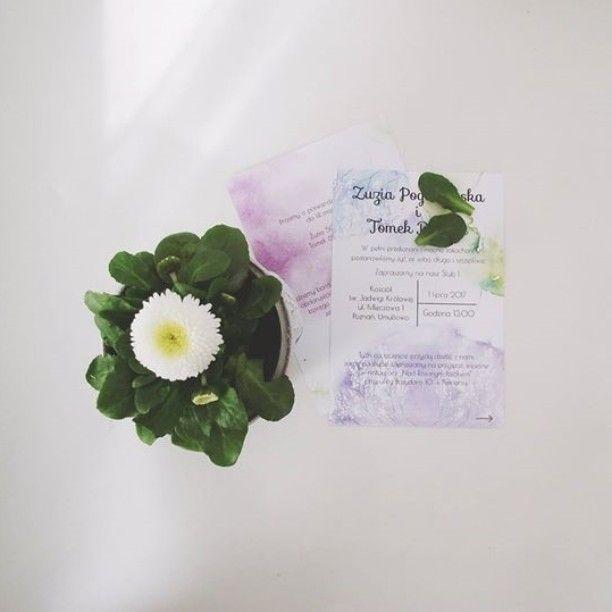 #invitation #wedding #flowers #kolory #wiosna #juhuu #kipimleko💐☀