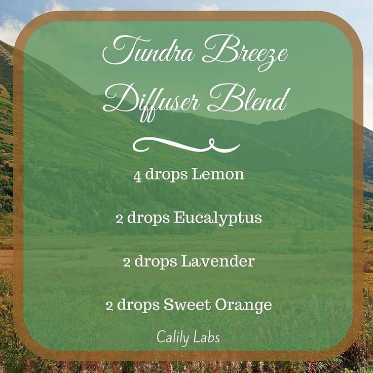 It feels like summer has returned these last few days. Let's imagine we are taking a brisk walk in the cool and open tundra with this diffuser blend of #lemon #eucalyptus #lavender and #sweetorange #essentialoils #diffuserblend