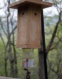 "DIY carpenter bee traps work. Google ""No Sting Bee Trap"" for a video but here are some examples sent to me by folks who've made one themselves."