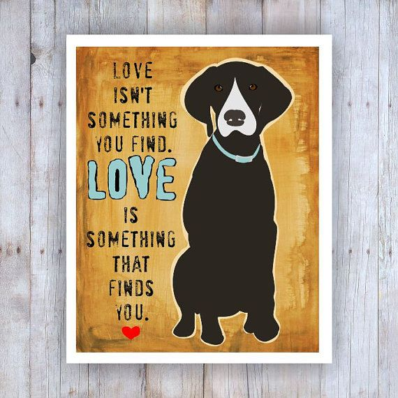 Love Finds You Quote: Best 25+ Rescue Dog Quotes Ideas On Pinterest