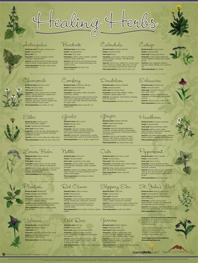 Healthy eating how healthy are our foods pinterest for Ayurvedic healing cuisine