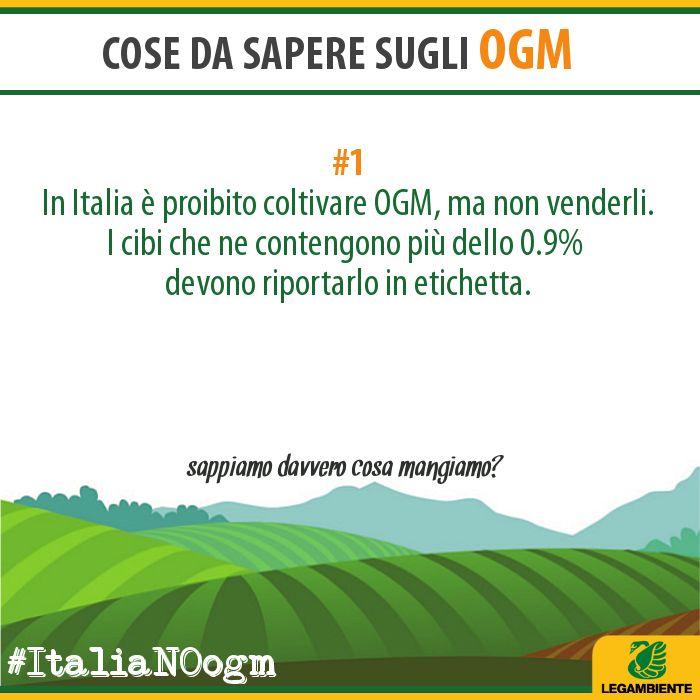OGM Info/1 www.legambiente.it/italia-NO-ogm #ItaliaNOogm