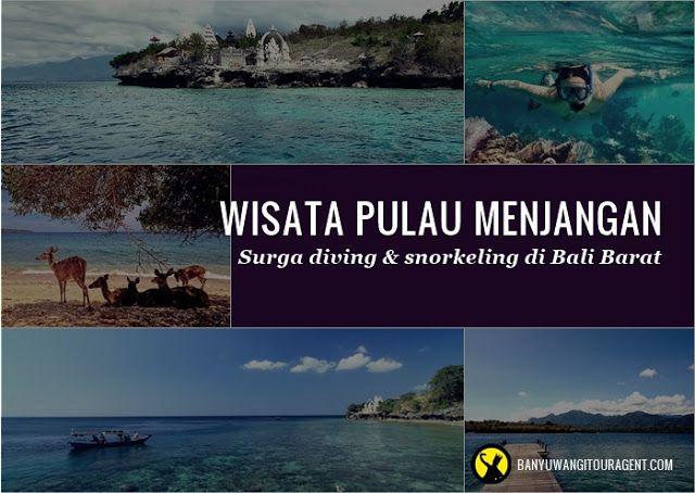 Pulau Menjangan, Surga Diving di Bali Barat