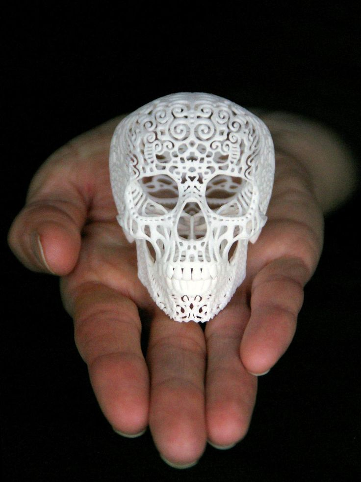 Crania Anatomica Filigre Skull (mini) 3d printed Art Sculptures