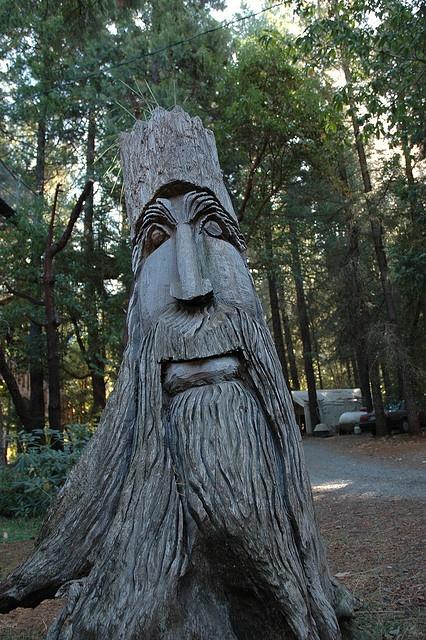 Best carve a tree stump into art images on pinterest