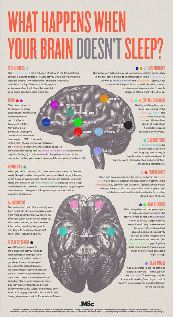 Many of us know that not getting enough sleep each night is bad for our health. But some of us underestimate how lack of sleep affects the human brain. This infographic from Mic.com covers what sleep deprivation does to your brain: