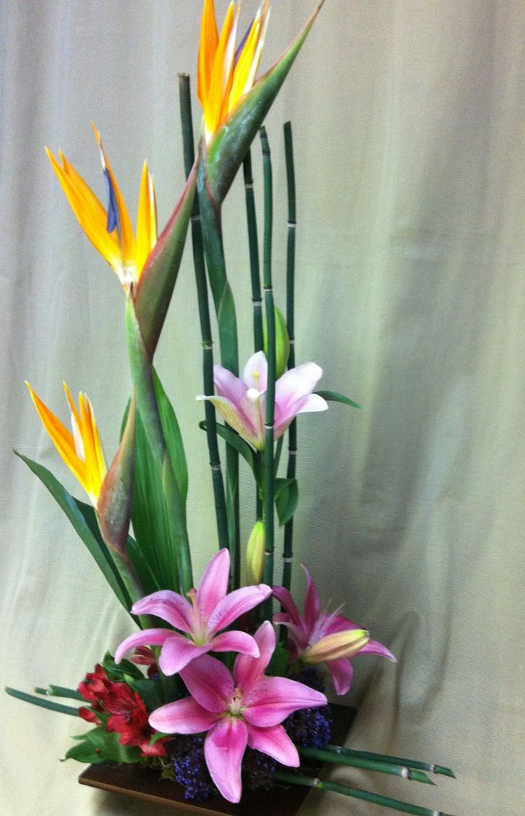 bamboo- powerful birds of paradise, pink asiatic lilies, red alstromeria, purple seafoam statice, green bamboo sticks, and moss in a brown inspired bamboo square container