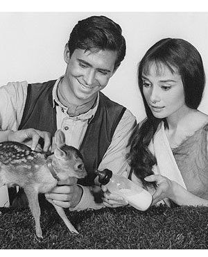 Audrey Hepburn with Green Mansions co-stars Anthony Perkins and Pippin (Ip), the fawn, 1959.