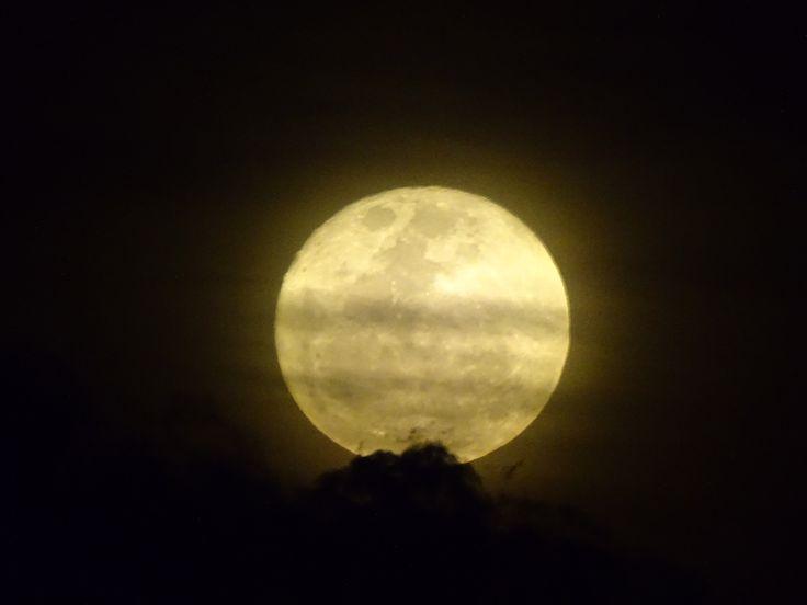 Para los condenados a muerte  y para los condenados a vida  no hay mejor estimulante que la luna  en dosis precisas y controladas  JAIME SABINES