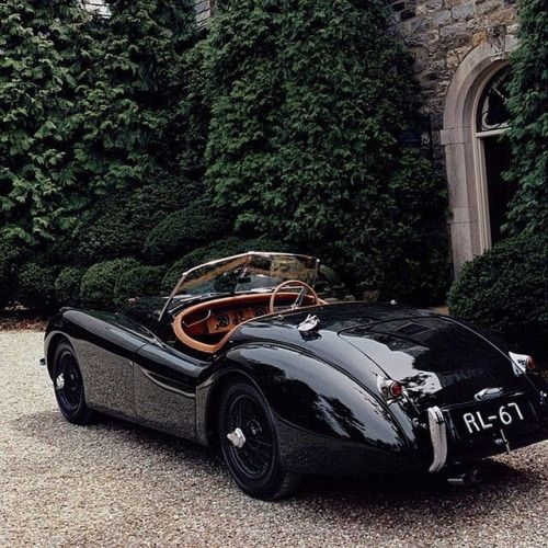 272 Best Images About Cars On Pinterest: 17 Best Images About GLAM & LUXURY Ride On Pinterest